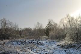 Sneeuw Landschap Ierland